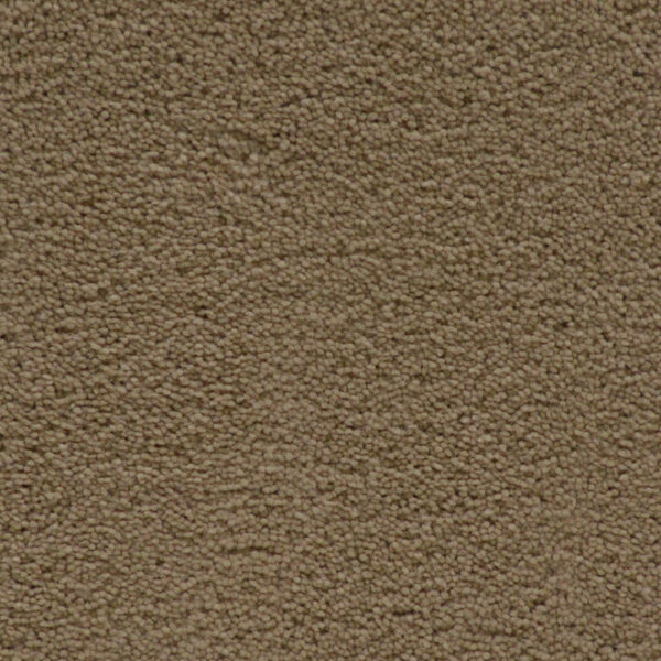 Simple Attraction  for Moore Flooring + Design webpage Simple Attraction