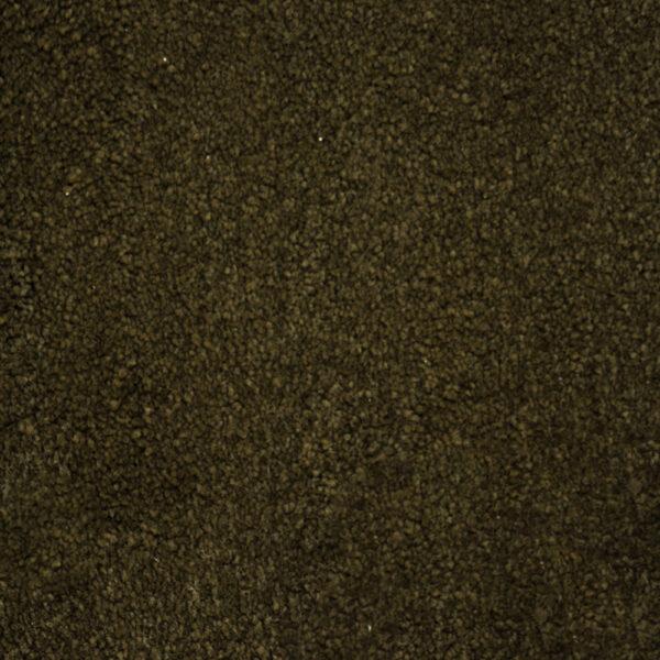 Bichon  for Moore Flooring + Design webpage Bichon