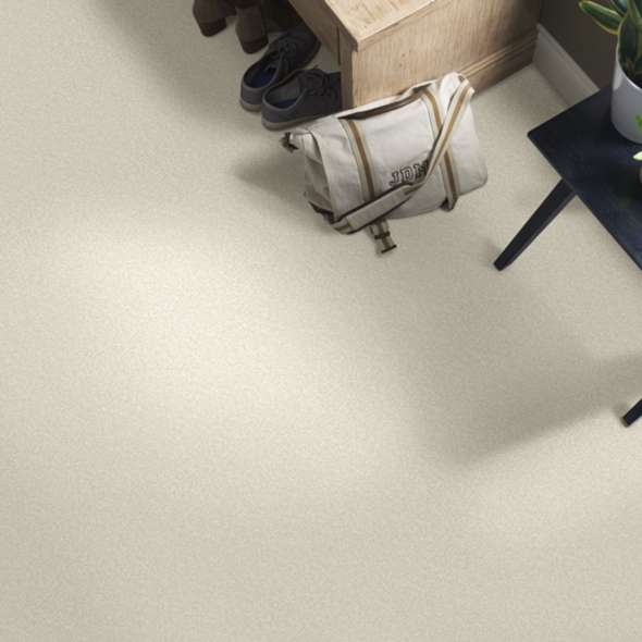 EVERYDAY COMFORT (S)  for Moore Flooring + Design webpage EVERYDAY COMFORT (S)